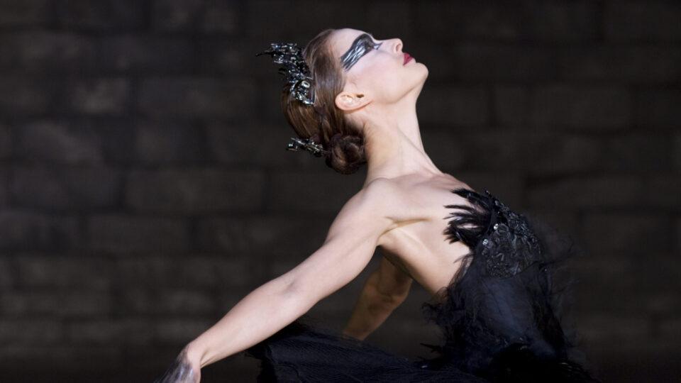 Black Swan 08